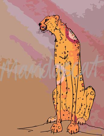 cheetah study 2