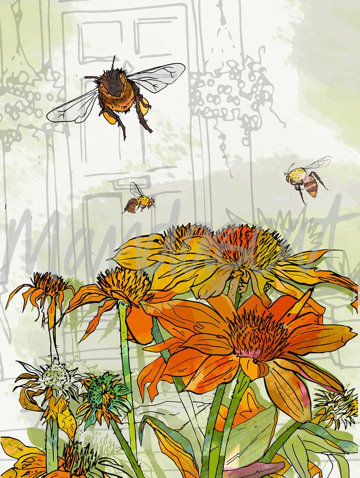 Orange Flowers with Bees